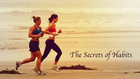 The Secrets Of Habit